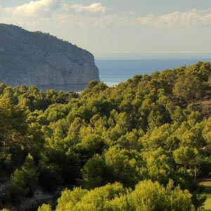 Golf de Andratx and Camp de Mar